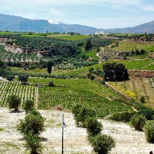 ... Agrotourism - Greece