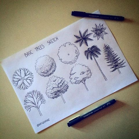Sketching ✍ #art #arte #arqui #arquitetura #arquitectura #archi #arch #architecture #archilovers #trees #plants #arvores #sketch #sketching #draw #drawing #desenho #desenhando #dibujo #paisagismo #urbanismo #urbano