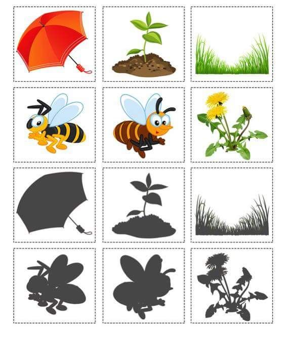 shadow worksheets for kids