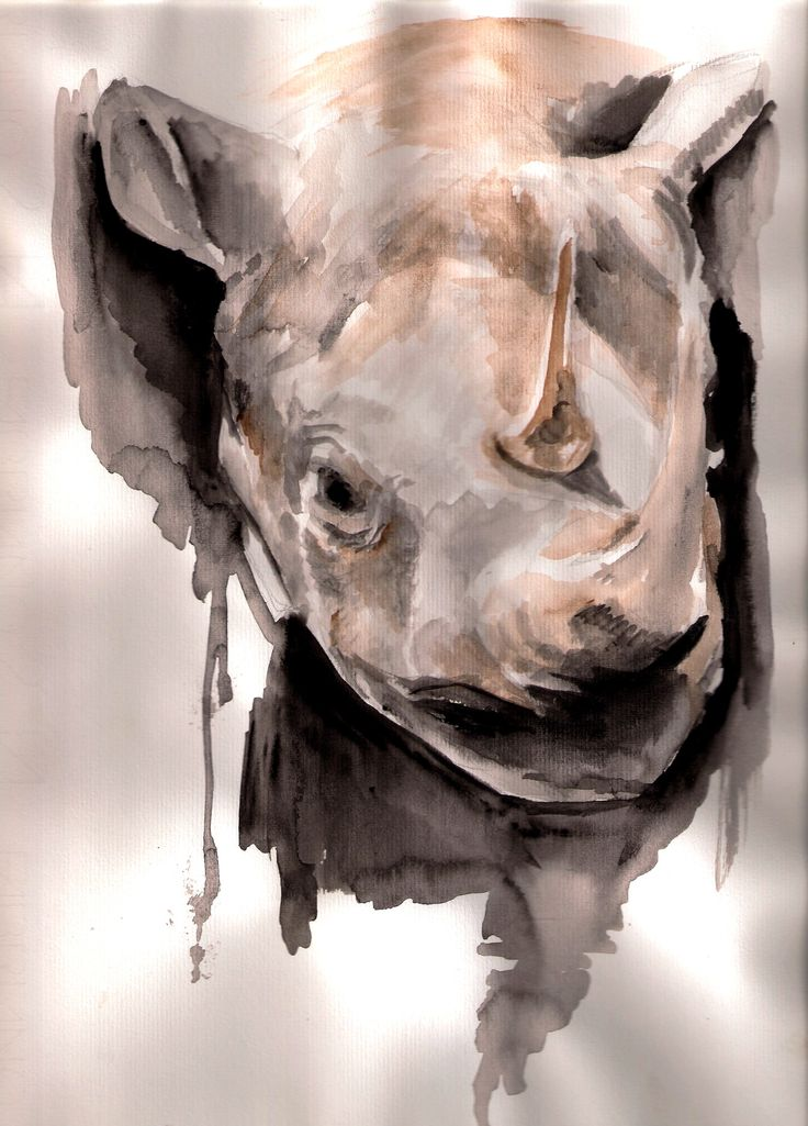 Ryno watercolor