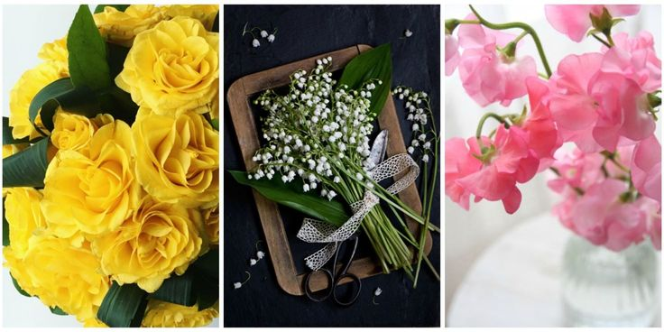 41 beautiful flowers and their meanings