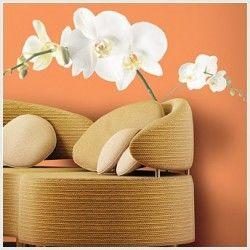 White Orchid Appliques