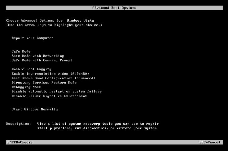 Advanced Boot Options Screen on Dell Computer