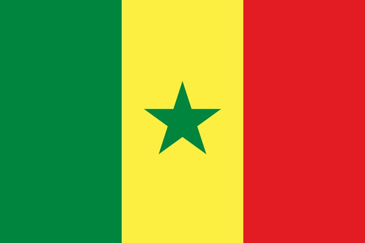 "Sénégal's flag represents several things. The green is symbolic for the various religions in he country. Both the green stripe and the star represents ""color of Prophet"". The yellow represents ""the symbol of wealth; it represents the product of work, for a nation whose main priority is the progress of economy"". The red represents the color of blood; the color of life and ""the sacrifice accepted by the nation""."