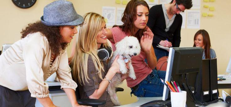 Surprising Company Benefits That Millennials Love