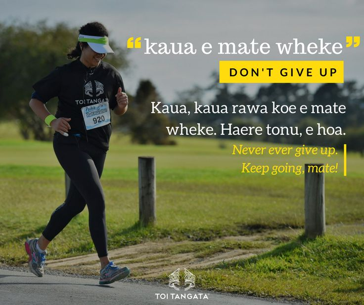 """When hunting wheke (octopus), they can put up a fight; but if you grab them by the head, they instantly become limp and lifeless. Our tupuna sees wheke as creatures who give up easily, hence our word for """"give up"""" is """"mate wheke"""", or """"mate tarakihi"""" (a fish that doesn't put up much of a fight when caught on a line). The opposite of """"mate wheke"""" is """"mate ururoa"""", which is dying like the great white shark, who fights to the very end. Kupu o te wiki: kaua e mate wheke. Don't give up…"""
