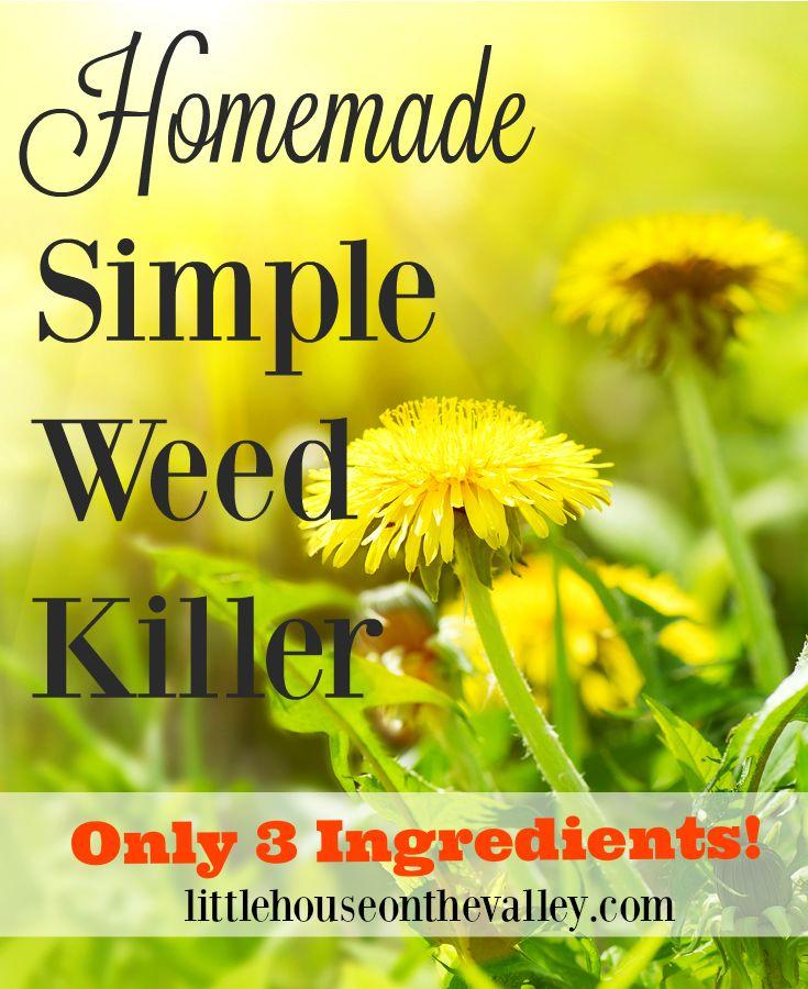 Simple Homemade Natural Weed Killer Recipe | Weed killers