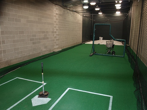 Rogers Batting Cage Batting Cage Backyard Indoor