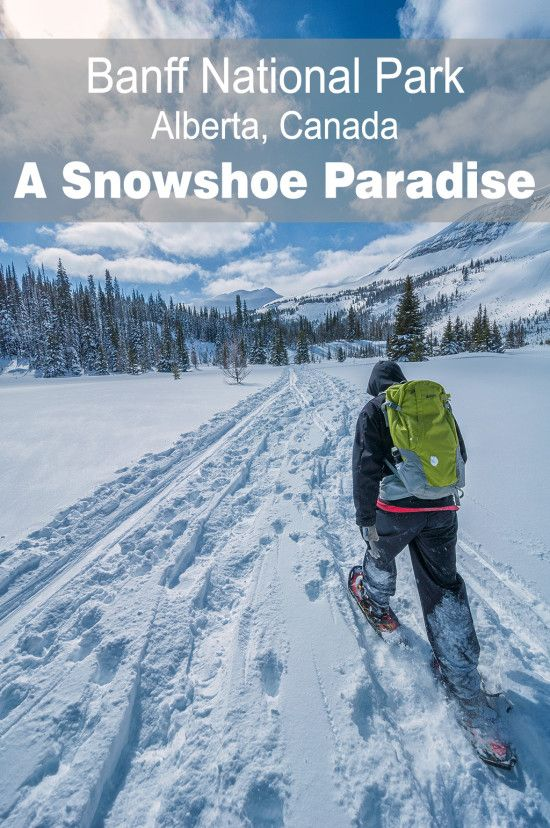 12 Activities Besides Skiing to do in Canada this Winter Banff National Park, A snowshoe paradise | Chasing Adventure