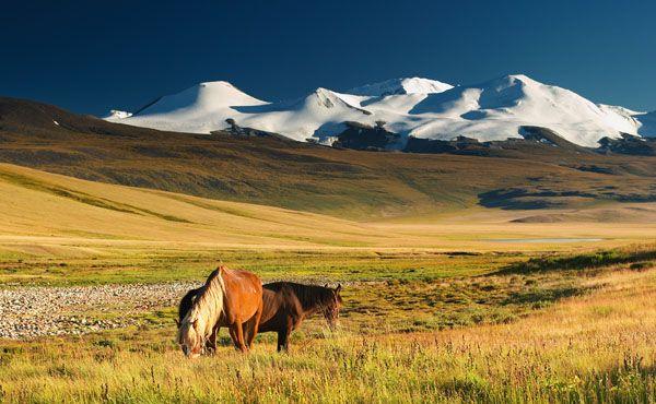 photo paysage mongolie