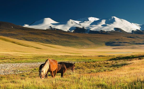 another pic of mongolia- I would love to go horseback riding there