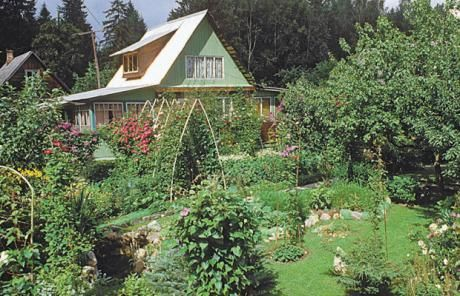 Cultivating happiness: growing your own fruit and veg is an integral part of the dacha experience