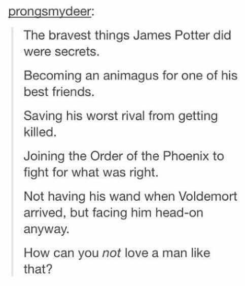 But you know, Snape is so misunderstood and so brave.
