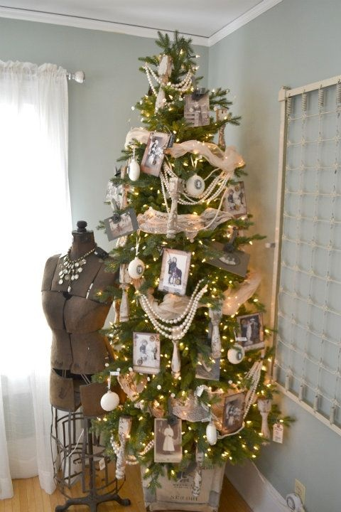 family tree via Bachman Idea home