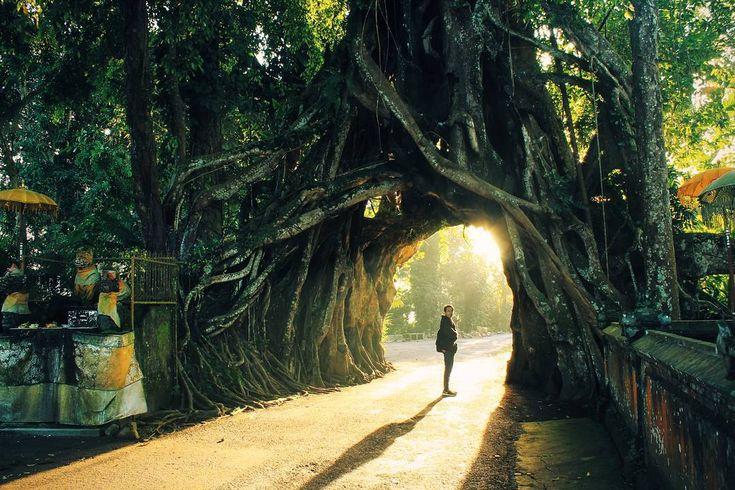 Tengok Yuk, 3 Tempat Wisata Alam di Bali Yang Sangat Asyik dan Unik