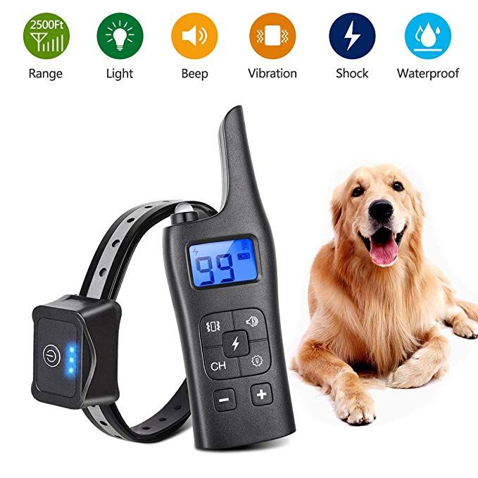 Dog Shock Collar With Remote Rechargeable 100 Ipx7 Waterproof For