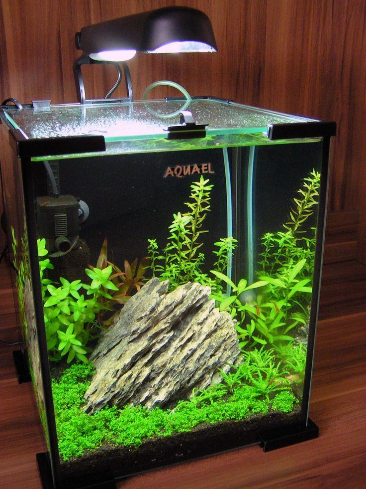 Aquael shrimp set 20l nano aquarium