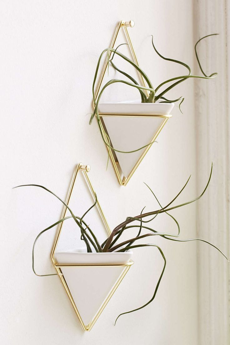 Hanging Plant Wall Decor : Best ideas about wall planters on diy