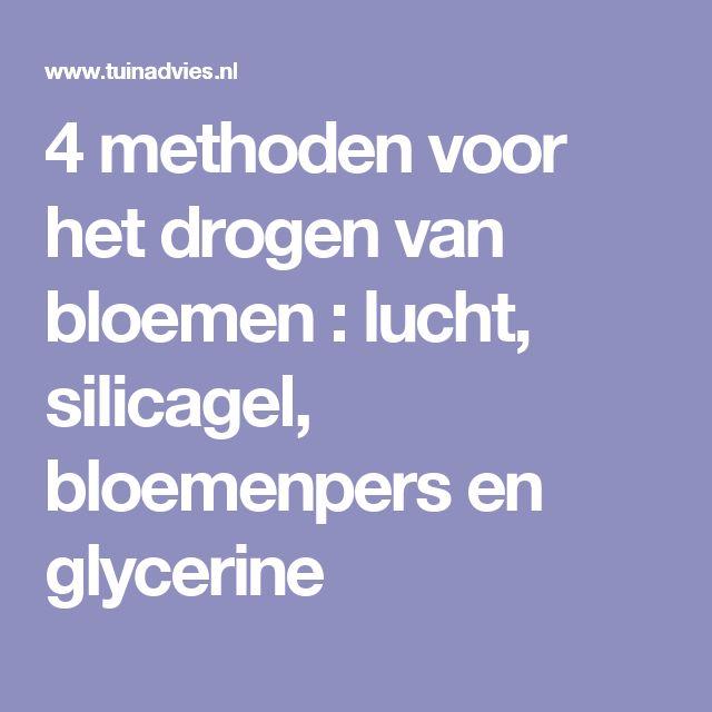 4 methoden voor het drogen van bloemen : lucht, silicagel, bloemenpers en glycerine