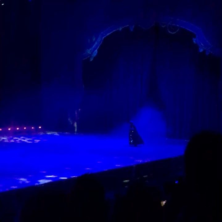 Disney on Ice has arrived in JhB get your tickets now. @disneyonice #disneyonice #elsa #frozen #disneyislife #follow4follow #like4like #instapic #picoftheday #videooftheday #showtime http://misstagram.com/ipost/1548782224052356015/?code=BV-YTobFIOv