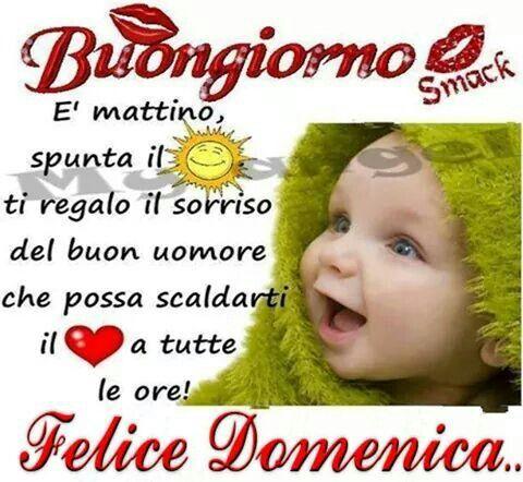 206 best aforismi frasi filastrocche images on pinterest for Frasi di buona domenica divertenti