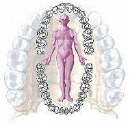 Il mio Blog Olistico: Odontoiatria olistica, questa sconosciuta