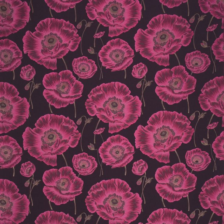 Oriental Poppy Fabric | Oriental Poppy Fabrics Collection | Sanderson Fabric