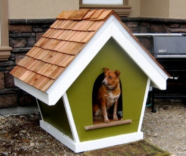The 25 Best Unique Dog House Designs Dog Houses Custom Dog