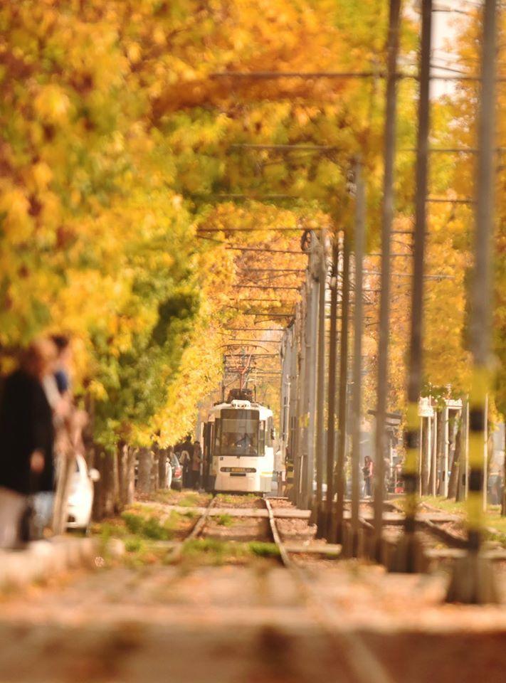 Tunelul Dragostei din Bucuresti vazut prin ochii fotografului Aurel Rapa | La zi pe Metropotam
