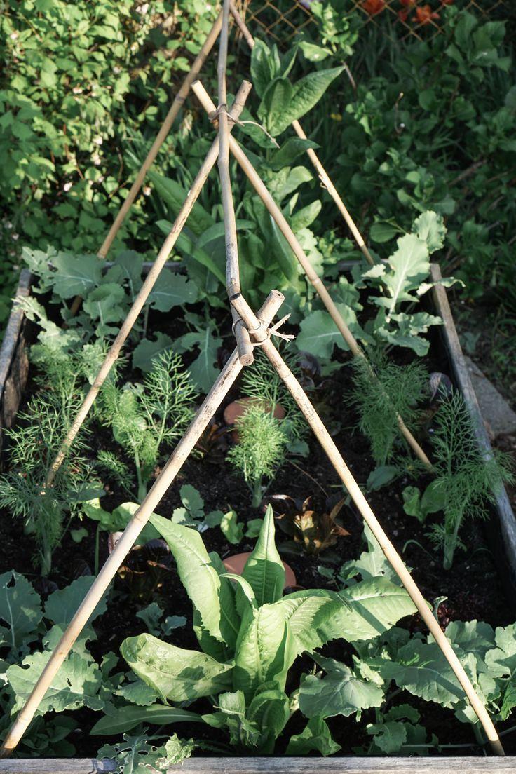 In 2 Stunden Ein Hochbeet Bauen Und Befullen Garten Pinterest