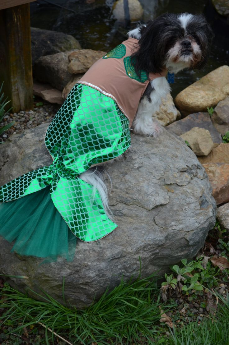 Unique and Awesome Mermaid Dog Halloween Costume size Large. $34.99, via Etsy.