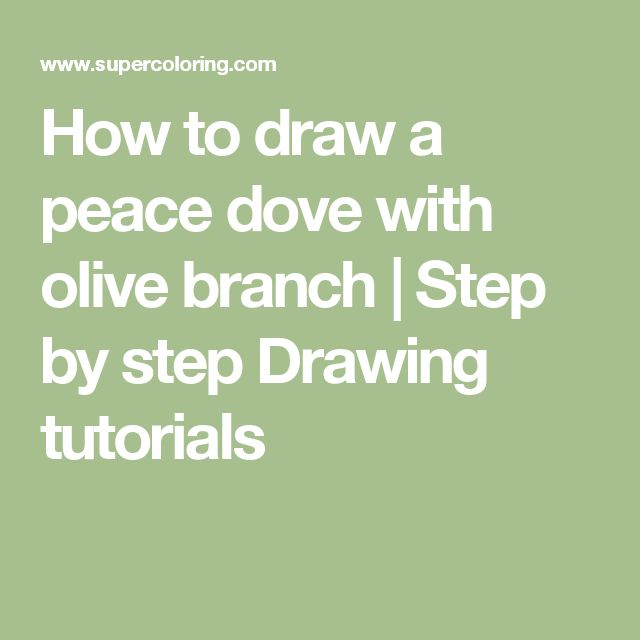 how to draw an olive branch step by step