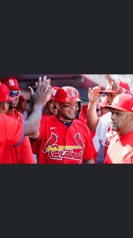 Pin by diane schartz on cardinals baseball cardinals