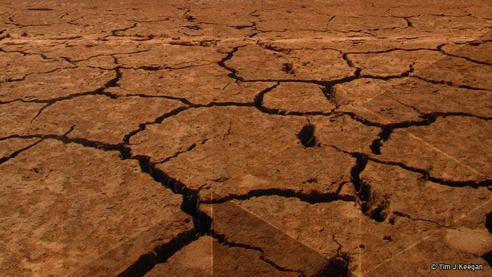 Drought Relief - help for farmers struggling through their second year of drought.