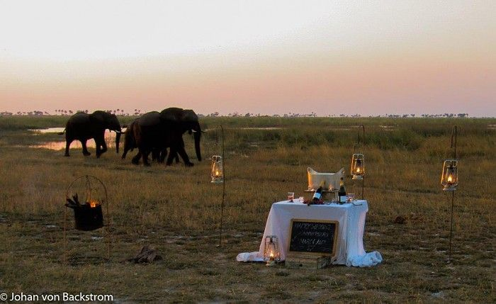 This setup was created for guests Marc and Alex who were celebrating their anniversary on this safari. We produced a surprise Champagne stop for them down at Fisherman's Island. While enjoying a glass of bubbly some eles decided to come by for a closer inspection. Needless to say, our guests scrambled for the safety of the vehicle, enjoying their sparkles in the company of these gentle giants...