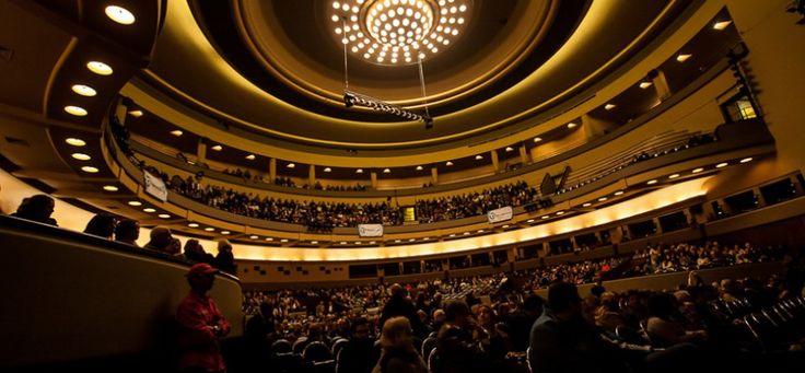 Image de A magia do circo de volta ao Coliseu do Porto a partir desta sexta-feira