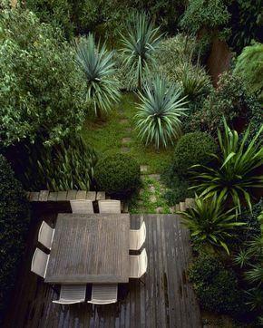 aménagement du petit jardin: terrasse en bois et palmiers