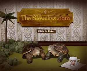 Love the Slowskys