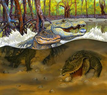 Three New Prehistoric Caiman Species Found in Peruvian Amazonia | http://www.sci-news.com/paleontology/science-gnatusuchus-pebasensis-three-new-prehistoric-caiman-species-peruvian-amazonia-02536.html | #science #paleontology #newspecies #caimans #crocodile #amazon #peru #miocene