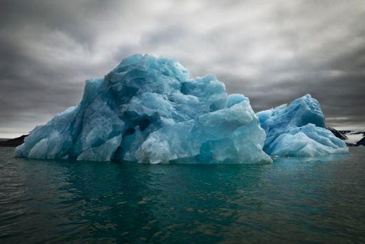 Blue Underside revealed, Svalbard 2010. Photo: Camille Seaman