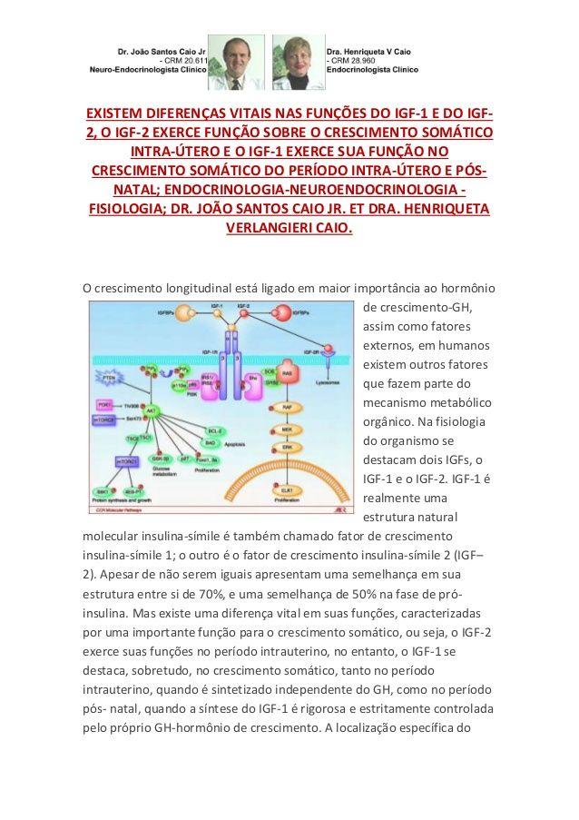 Estatura feto,criança,infantil,juvenil;fatores de crescimento insulina símile 1 2 e igfb ps by VAN DER HAAGEN via slideshare
