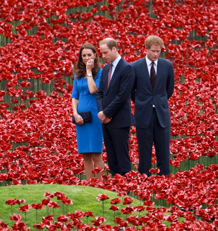 Prince William, Kate and Prince Harry walk in the red sea of poppies at the Tower of London. August 05, 2014.