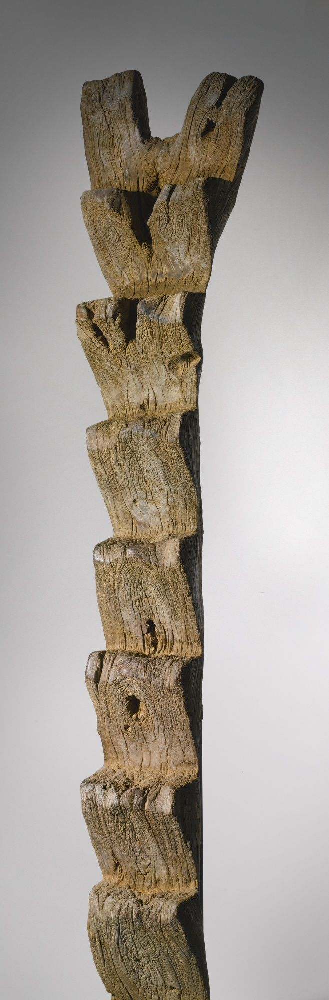 Dogon Ladder, Mali. Height: 8 ft 4 in (254 cm) ... Of enormous proportions and great age