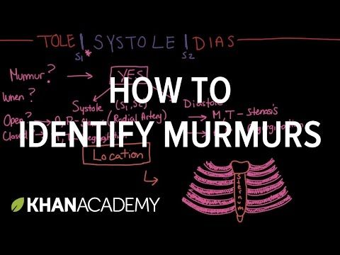 Systolic murmurs, diastolic murmurs, and extra heart sounds - Part 1 - YouTube
