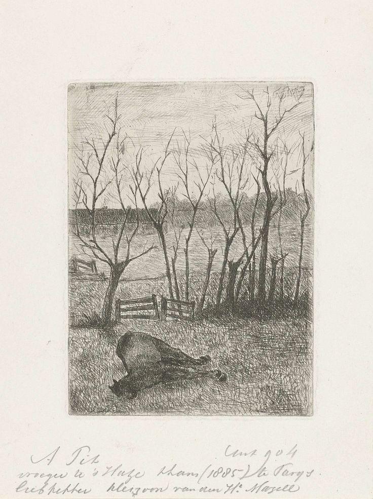 Adriaan Pit | Weiland met paard, Adriaan Pit, 1870 - 1887 | Een paard ligt op het gras in een weiland. Op de achtergrond een rij bomen en een houten hek als omheining.