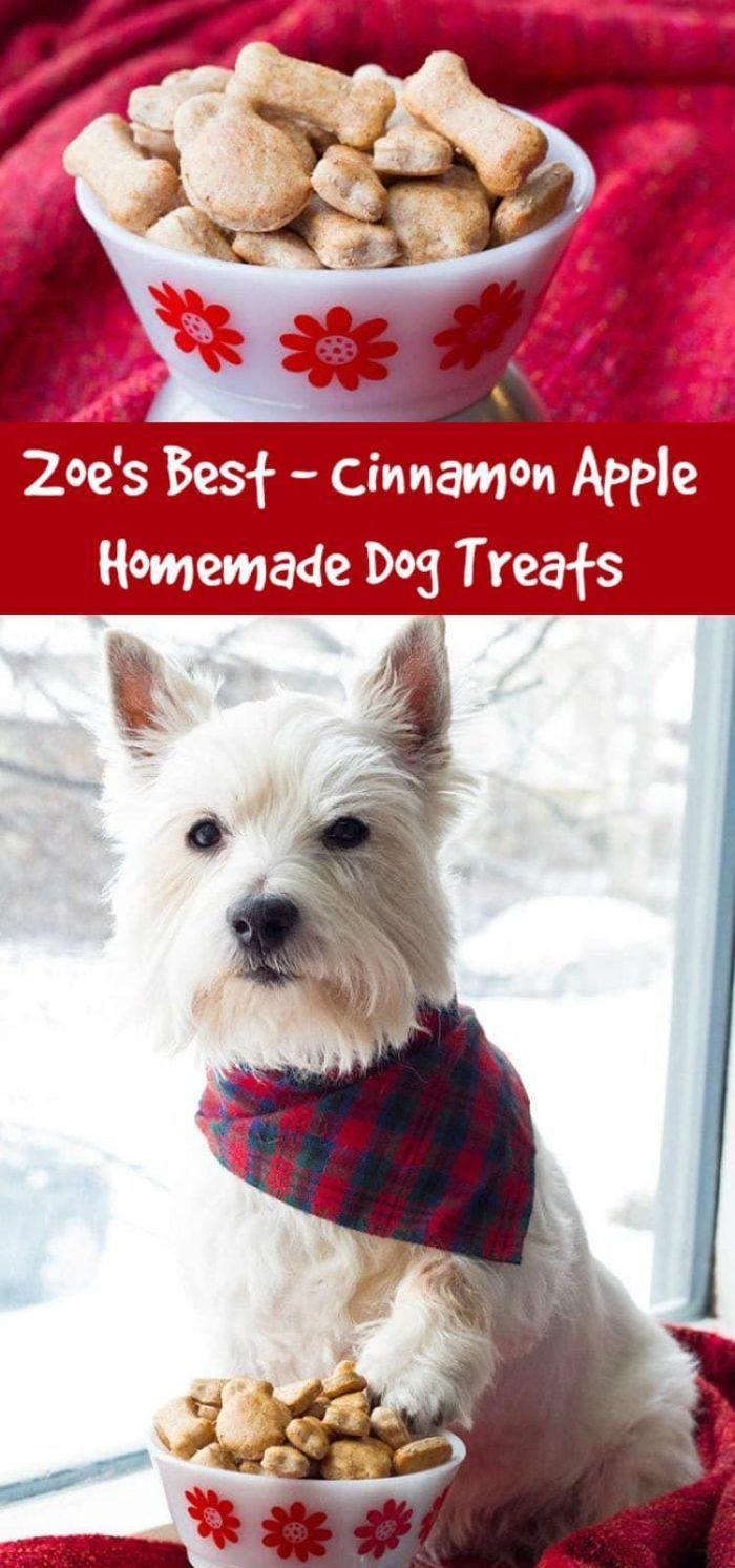 Zoe S Best Cinnamon Apple Homemade Dog Treats For Dogs With