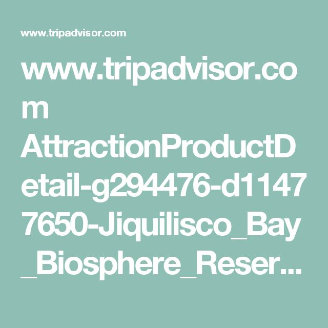 www.tripadvisor.com AttractionProductDetail-g294476-d11477650-Jiquilisco_Bay_Biosphere_Reserve_Turtle_Rodeo_Capture_Tour-San_Salvador_San_Salvador_Department.html