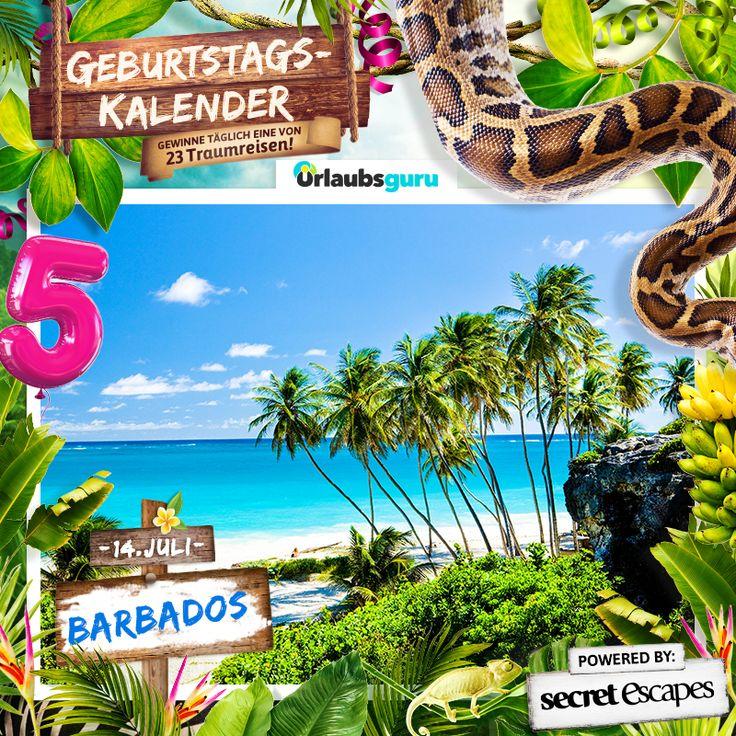 Gewinnt eine gratis Reise nach Barbados! Wer einen kostenlosen Urlaub auf Barbados verbringen möchte, hat jetzt die Chance dazu. Nehmt an meiner Verlosung teil und mit ein bisschen Glück liegt ihr schon bald am Strand unter Palmen!