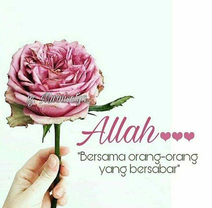 """""""Sesungguhnya Allah bersama orang-orang yang bersabar"""" (QS. Al Baqarah: 153) . """"Hai orang-orang yang beriman bersabarlah kamu dan kuatkanlah kesabaranmu"""" (Ali Imran: 200) . """"Sesungguhnya hanya orang-orang yang bersabarlah yang dicukupkan pahala mereka tanpa batas"""" (Az Zumar: 10) ."""