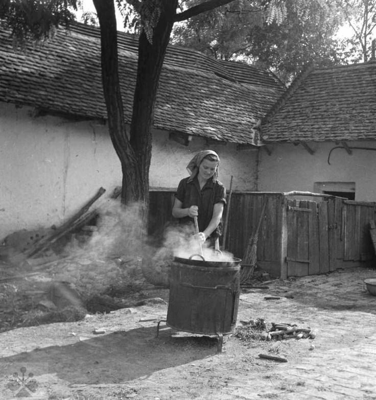 'Plum jam making' Varenie slivkového lekváru. Nelokalizované, 50.roky 20. storočia. Archív negatívov Ústavu etnológie SAV v Bratislave. Foto: S. KOvačevičová